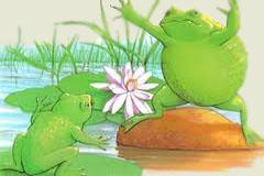 Poezii pentru copii - Ghicitoare despre broaşte