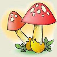 Poezii pentru copii - Ghicitoare despre ciuperci