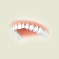 Poezii pentru copii - Ghicitoare despre dinţi