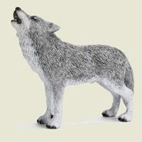 Poezii pentru copii - Ghicitoare despre lup