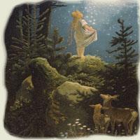 Poezii pentru copii - Ploaia de stele